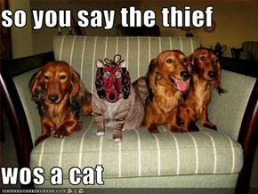 so you say the thief  wos a cat