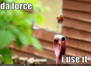 da force  i use it