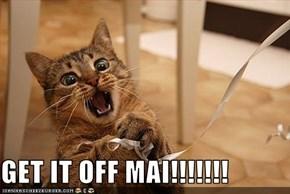 GET IT OFF MAI!!!!!!!