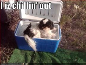 I iz chillin' out