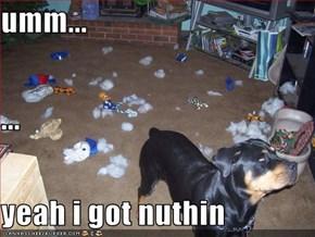 umm... ... yeah i got nuthin