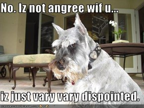 No. Iz not angree wif u...  iz just vary vary dispointed.