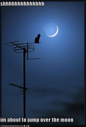 shhhhhhhhhhhhhh  im about to jump over the moon