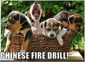 CHINESE FIRE DRILL!