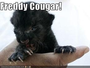 Freddy Cougar!