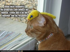 hello tech support? my program cant detect my mouse. i even put it on the monitor, but no respond