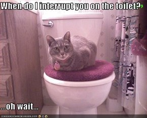 When do I interrupt you on the toilet?  ...oh wait...