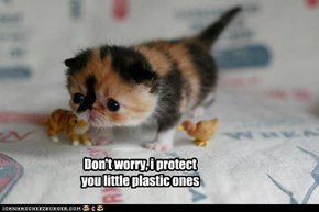 Don't worry, i protect you little plastic ones