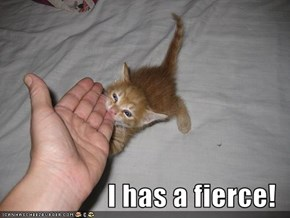 I has a fierce!