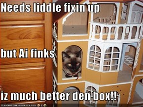 Needs liddle fixin up but Ai finks iz much better den box!!