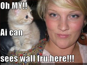 Oh MY!! Ai can sees wall fru here!!!
