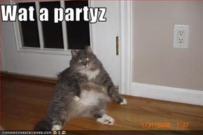 Wat a partyz