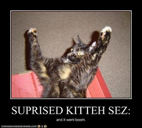 SUPRISED KITTEH SEZ: