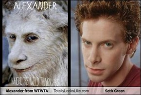 Alexander from WTWTA Totally Looks Like Seth Green