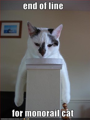end of line  for monorail cat