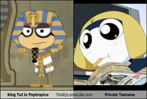 King Tut in Poptropica Totally Looks Like Private Tamama