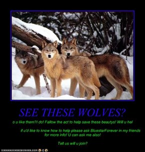 SEE THESE WOLVES?