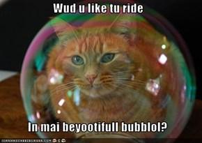 Wud u like tu ride  In mai beyootifull bubblol?