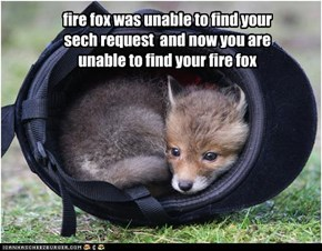 fire fox was unable to find your sech request  and now you are unable to find your fire fox