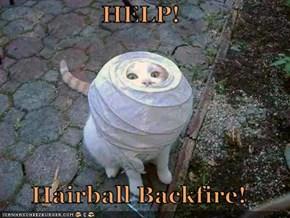 HELP!        Hairball Backfire!