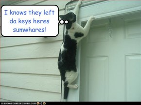 I knows they left da keys heres sumwhares!