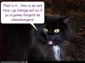 That's it... this iz da last time i go hikings wif yu if yu is gonna forgets da cheezburgers!