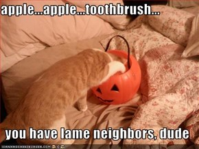 apple...apple...toothbrush...  you have lame neighbors, dude