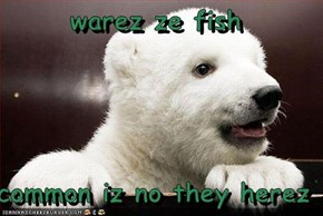 warez ze fish  common iz no they herez