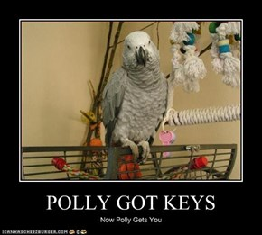 POLLY GOT KEYS