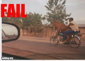 Livestock Transportation Fail