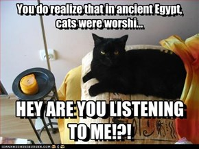 You do realize that in ancient Egypt, cats were worshi...          HEY ARE YOU LISTENING TO ME!?!
