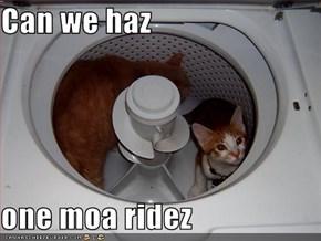 Can we haz  one moa ridez
