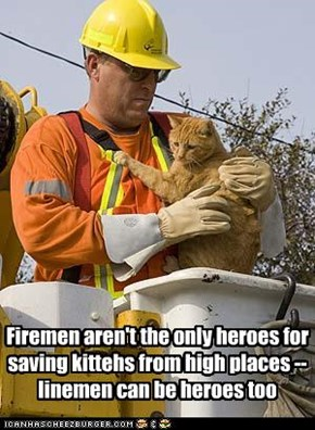Firemen aren't the only heroes for saving kittehs from high places -- linemen can be heroes too