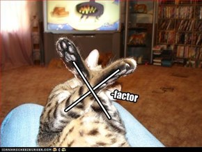 -factor