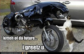 kitteh of da future...