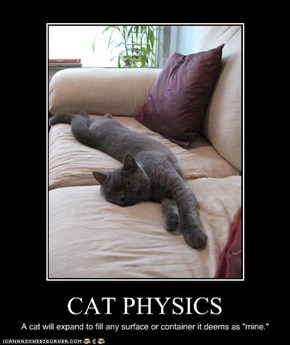CAT PHYSICS