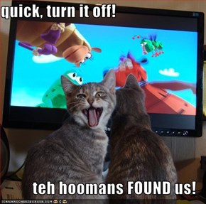 quick, turn it off!  teh hoomans FOUND us!