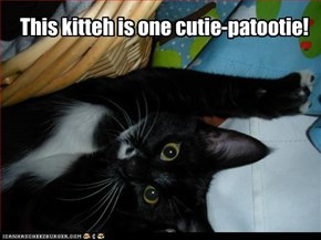This kitteh is one cutie-patootie!