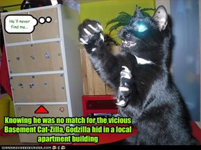 Knowing he was no match for the vicious Basement Cat-Zilla, Godzilla hid in a local apartment building