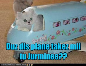 Duz dis plane takez mii tu Jurminee??