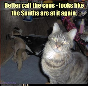 Better call the cops - looks like  the Smiths are at it again.