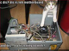c dis? dis is teh motherboard  and dis.... r u listening to meh?