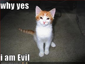 why yes  i am Evil