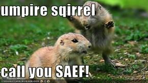 umpire sqirrel  call you SAEF!