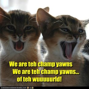 We are teh champ yawns    We are teh champ yawns...        of teh wuuuuurld!