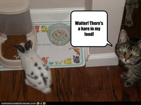 Waiter! There's a hare in my food!