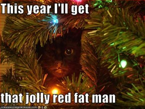 This year I'll get  that jolly red fat man