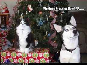 We Open Pressies Now???.........