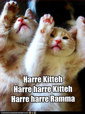Harre Kitteh Harre harre Kitteh Harre harre Ramma