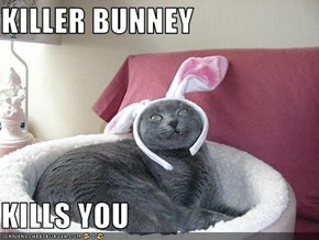 KILLER BUNNEY  KILLS YOU